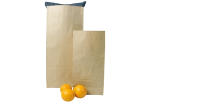 Heavy Duty Block Bottom Brown Bags #0 90 x 205 x 50